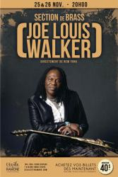 joe louis walker-.jpg.